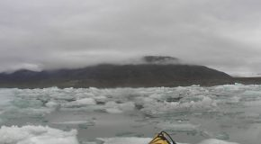 # 41: Navigating with seals in the Arctic icebergs
