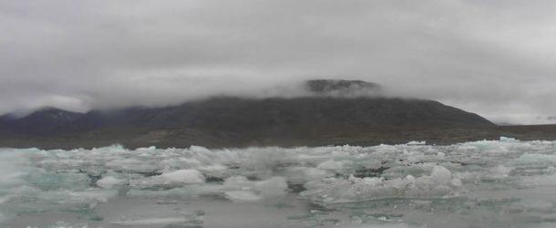 #41 : Naviguer avec les phoques dans les icebergs de l'Arctique