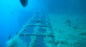 #145 : Diving on the Zenobia, one of the 10 best wrecks in the world