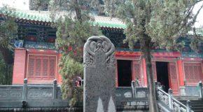 #196 : Apprendre le Kung Fu à Shaolin