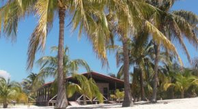 # 307: Exploring the island of Cayo Blanco