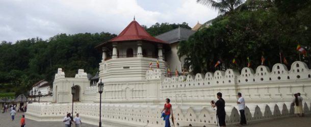 #369 : Voir la relique de la dent de Buddha