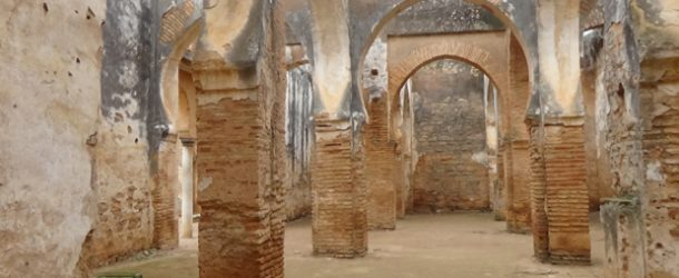 #444 : Discovering the Chellah, the Hassan Tower, and Mohammed V's grave