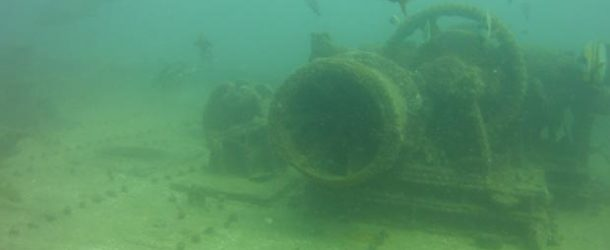 #459 – Diving in the Fang Ming's wreck in La Paz with a sea lion as guide