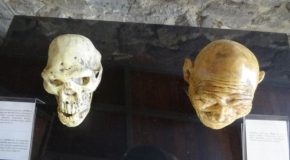 #507 : Meeting the oldest european human Homo Gerogicus Erectus