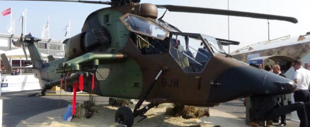 #517 : Voir un Tigre volant en démonstration de chasse