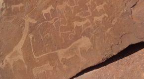 #532 : Rechercher les pétroglyphes San de Twyfelfontein