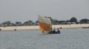 #551 : Explorer les mangroves et les Îles de Loos en Guinée
