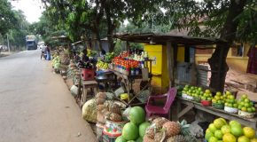 #340 : Making one's shopping on the fruit market of Kindia in Guinea