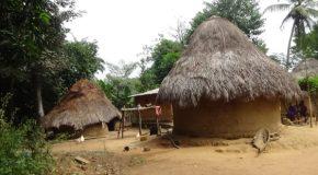 #12 : Rencontrer le peuple Peuls en Guinée Conakri