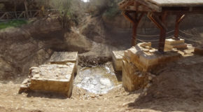 #563 : Going to the Christ's baptism site in Bethanie