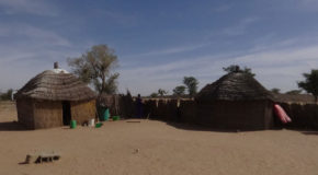#679 : Visiting a Peule ethnic group Village in Senegal