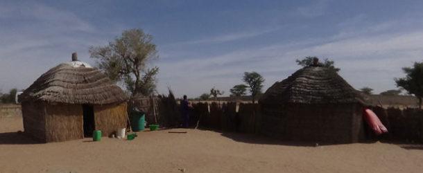 #679 : Visiting a Peule ethnic group Village in Senegal