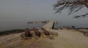 #651 : Explorer l'île James et les forts anglais du fleuve Gambie