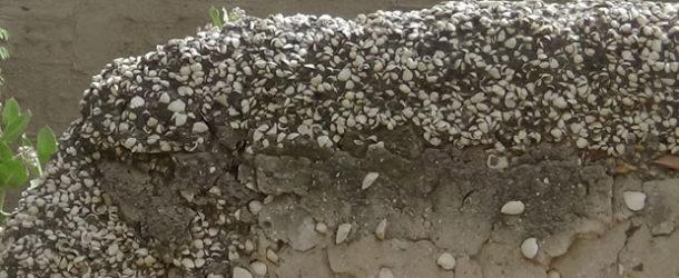 #670 : Visiter l'île aux Coquillages de Fadiouth au Sénégal