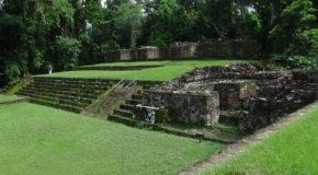 #714 : Observer les Hiéroglyphes de la cité Maya de Copan