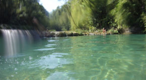 #699 : Nager dans les bassins de Semuc Champey