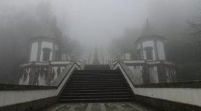 #717 : Climbing the steps of the sanctuary of Bom Jesus in Braga in Portugal